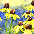 Blackeyed Beauties by Pauline Walsh Jacobson