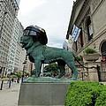 Blackhawks Lion 2 by Jenny Hudson