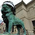 Blackhawks Lion by Jenny Hudson
