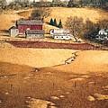 Blackshear Hollow by Tom Wooldridge
