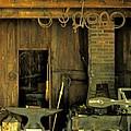 Blacksmith Anvil by Ian  MacDonald