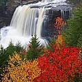 Blackwater Falls In Autumn by Jetson Nguyen