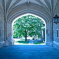 Blair Hall Arch by Lexi Heft
