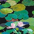 Blairs Pond by Allan P Friedlander