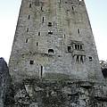 Blarney Castle by Tiffany Erdman
