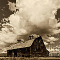 Blasdel Barn by Mark Kiver