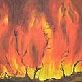 Blazing Fire by Usha Shantharam