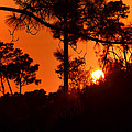 Blazing Sunset by DigiArt Diaries by Vicky B Fuller