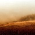 Bleak Autumn by Theresa Tahara