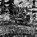 Bleak Renewal by Pharris Art