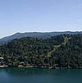 Bled Vista by Alan Pickersgill
