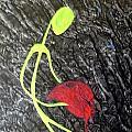 Bleeding Heart by Sheen Douglas Eisele
