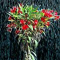 Blessed Rain by Carlos Vieira