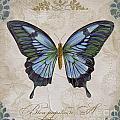 Bleu Papillon-a by Jean Plout