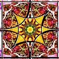 Blissful Ascension by Derek Gedney