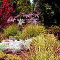 Blithewold Gardens Bristol Rhode Island by Tom Prendergast