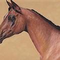 Blood Arabian Queen by Loreen Pantaleone