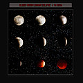Blood Moon Lunar Eclipse 2014 Color by La Rae  Roberts