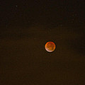 Blood Moon by Tikvah's Hope