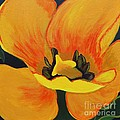 Bloomed Yellow Tulip by Barbara Griffin