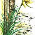 Blooming Daffodil by Teresa White