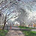 Blooming In Niagara Park by Ylli Haruni