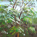 Blooming Tree by Roni Ruth Palmer