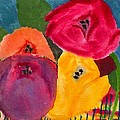 Blooms by Ann Marie Noyman