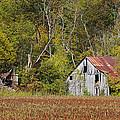 Bloomsdale Barn by Harold Rau