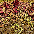 Blossoms And Tree In Yellow And Red by Miriam Danar