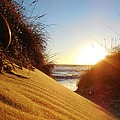 Blowing Sand Dune 12 11/03 by Mark Lemmon