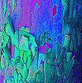 Blue Abstract Trunk by Karen Adams