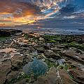 Blue And Gold Tidepools by Peter Tellone