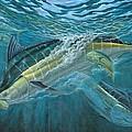 Blue And Mahi Mahi Underwater by Terry Fox