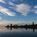 Brushstrokes On The Sky - Blue And White Serenity by Georgia Mizuleva