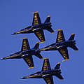 Blue Angels by Bill Gallagher