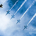 Blue Angels by Kate Brown