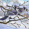 Blue Bandits Winter Afternoon by Richard De Wolfe