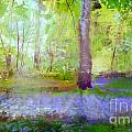 Blue Bells In The Wood Painting Number 1 by George Sneyd