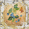 Blue Berries And Butterfly On Vintage Tin by Jean Plout