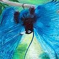 Blue Bird Of Paradise by Anne Cameron Cutri