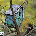 Blue Birdhouse by Gordon Elwell