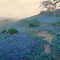 Blue Bonnet Field In San Antonio by Mountain Dreams
