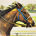 Blue Bridle by Alice Gipson