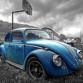 Blue Bug by Brian Fisher