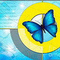 Blue Butterfly by Peter Awax