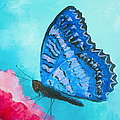 Blue Butterfly by Jan Matson