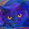 Blue Cat Ponders by Diane Parnell