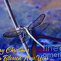 Blue Christmas by Beverly Guilliams