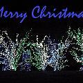 Blue Christmas by Darren Robinson